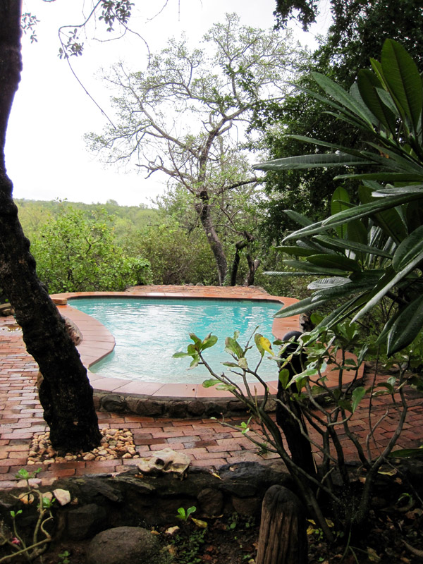 Makutsi Tented Camp pool